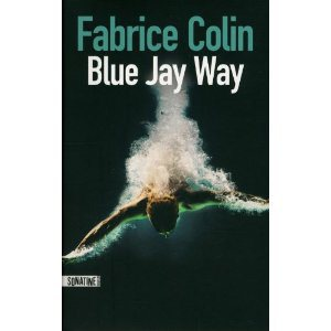 Critique – Blue Jay Way – Fabrice Colin