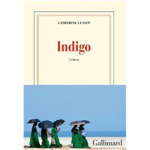 Critique – Indigo – Catherine Cusset