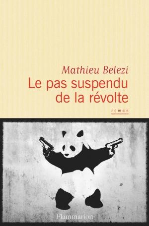 Critique – Le pas suspendu de la révolte – Mathieu Belezi – Flammarion